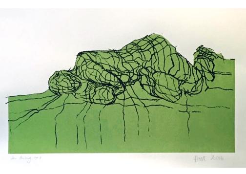 net lying figure green